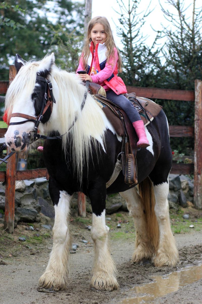 Horse Riding at Club Villa Bran, Bran,Romania