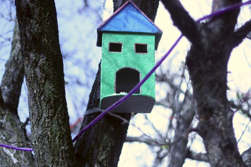 We made a bird house
