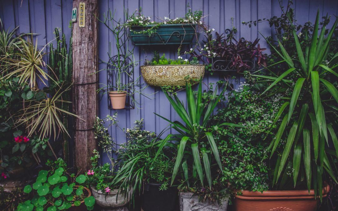 Garden furniture – dreaming of summer